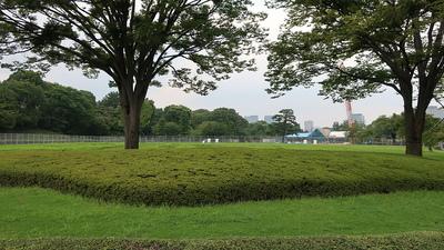 本丸大芝生
