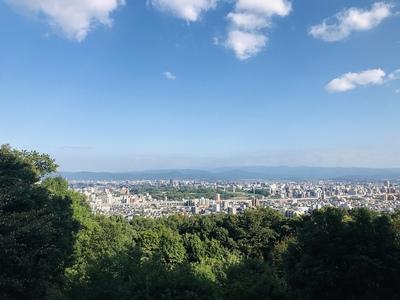 熊本城超遠景(本妙寺公園から)