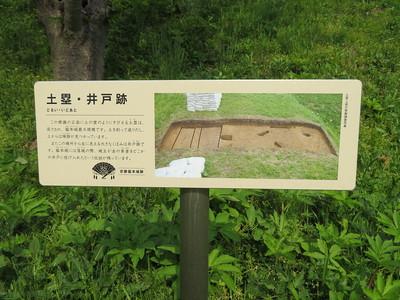 土塁・井戸跡