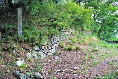 本丸石垣(南西側)