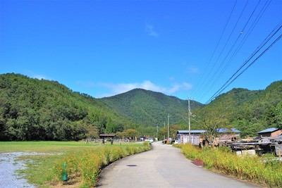 小谷城遠景(南側)