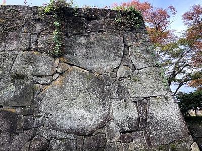 石垣の中で最大の石