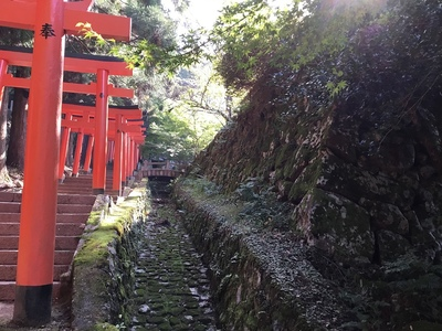 石垣と水路