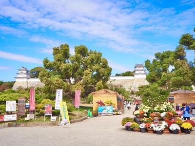 菊花展覧会で賑わう城址