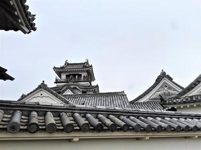 黒鉄門から本丸御殿と天守の屋根