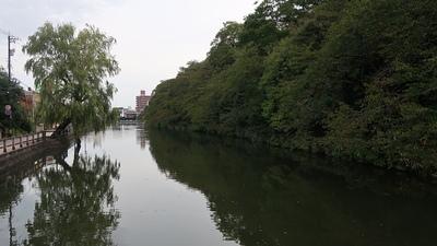 池の端濠(西外濠)