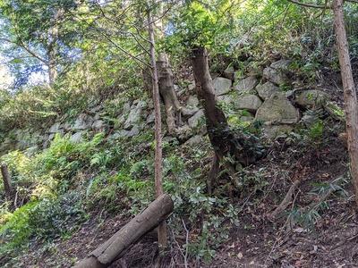 本丸倉屋敷郭 西側石垣