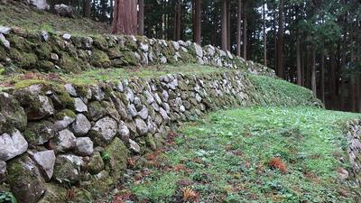 調度丸の石垣(東側から)