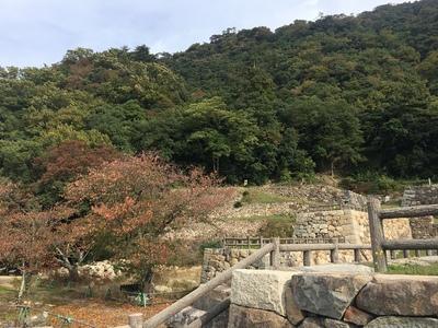 菱櫓跡から山上の丸を見上げる