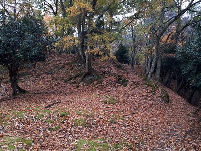 馬場付近の紅葉