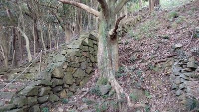 花尾城 石段