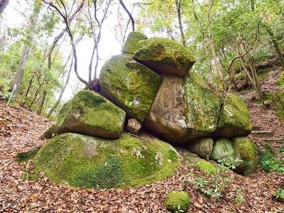 巨石群の節理