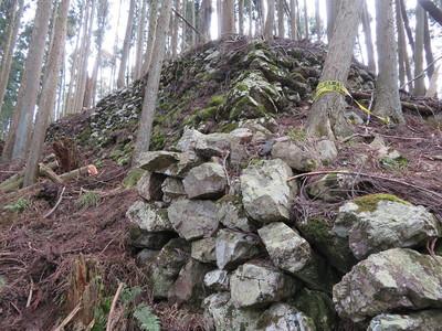 西尾根の石垣(Ⅵ・小姓丸)