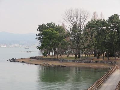 歩道橋から膳所城本丸(公園)