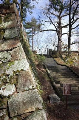 石垣と石段とイチョウの木