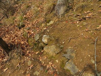 二ノ丸下、城道の下の石積み