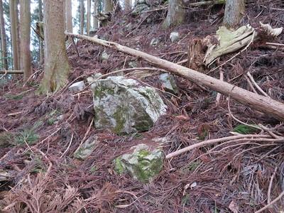 西尾根(Ⅵ・小姓丸)下段の石垣