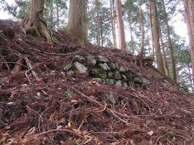 二ノ丸北側石垣