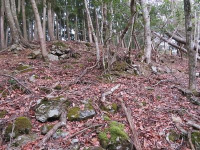 鷹屋ノ丸南側石垣
