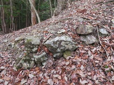 南尾根(Ⅶ側)の登り石垣