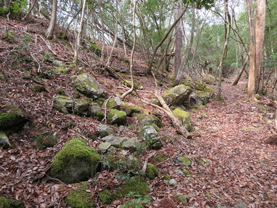馬屋ノ丸(南尾根・Ⅶ)の石垣