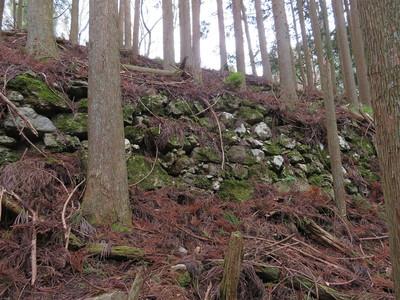 本丸南西側付近の石垣