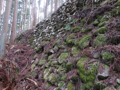 小姓丸(西尾根・Ⅵ)北側石垣