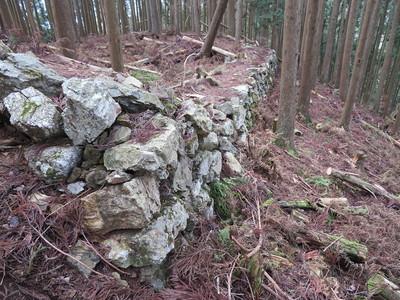 小姓丸(西尾根・Ⅵ)下段、北側石垣