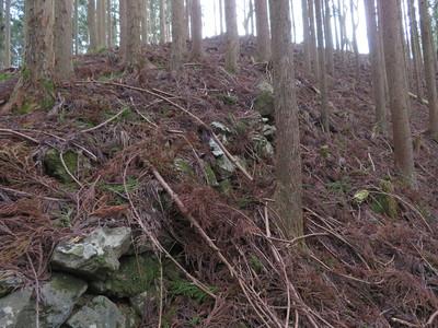 北尾根曲輪群(Ⅸ)一・二段目付近の登石垣