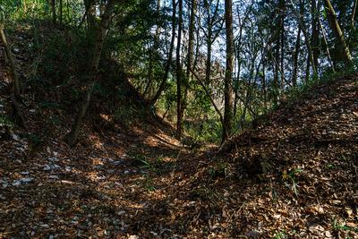 主郭南の虎口付近の堀