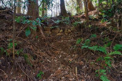 東の丸に至る土橋の石積