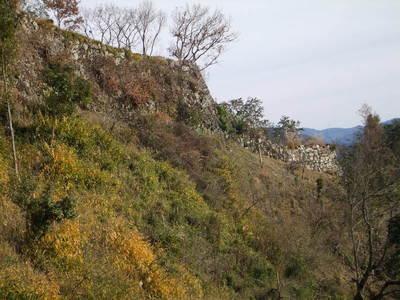 二の丸 西側石垣