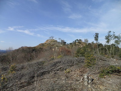 南端の郭からみた城域