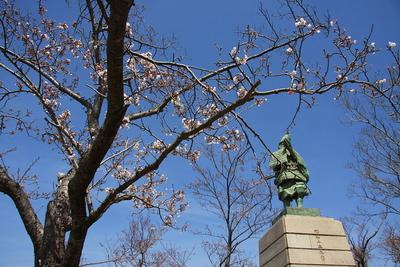 桜と楠木正行像