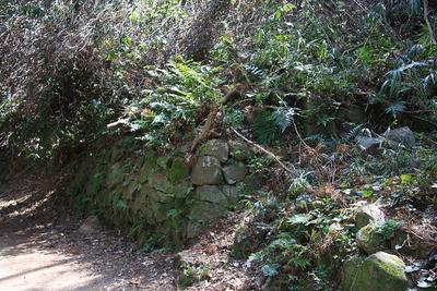 本郭下の石垣