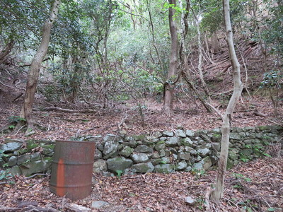 石段ひな壇の谷