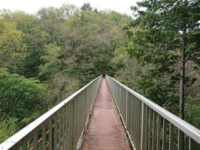 鈴岡城との間を結ぶ水道橋