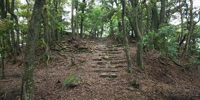 後瀬山城 本丸への石段