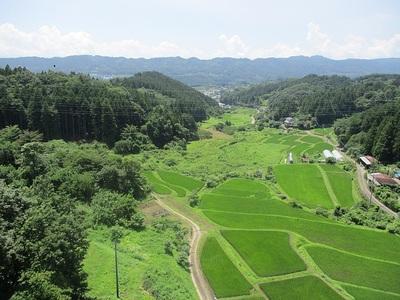 風景(鷹留城橋から)