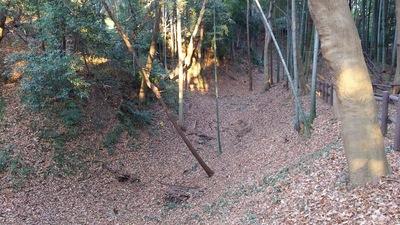 本丸跡の土橋から空堀を見る