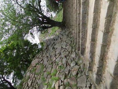 右善ノ丸石垣、三階櫓跡台(奥)