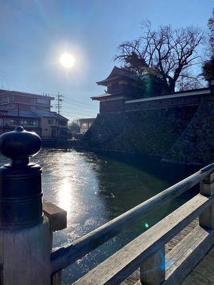 高島城③ 朝日に照らされる氷堀