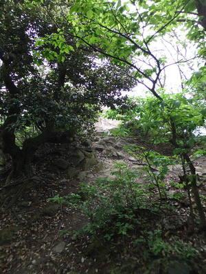 十神砦(外神砦)跡
