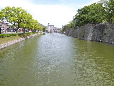 水堀にたなびく鯉のぼり