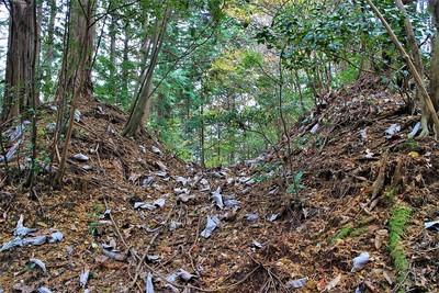 北側片薬研堀(西側)