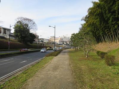 紀州堀(外堀)