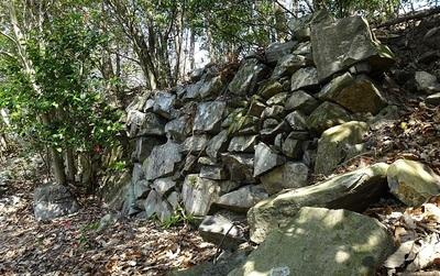 石垣(桜の馬場)