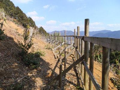 南の腰曲輪の柵