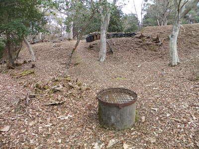 帯曲輪にある井戸、奥は主郭の土塁