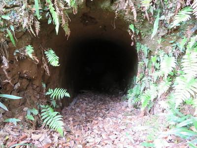 堀底の防空壕